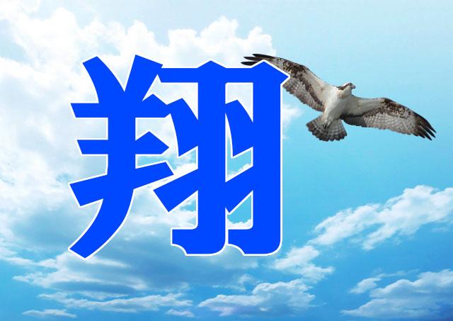 翔は名前には良くない縁起の悪い漢字なのか?意味由来や噂を検証