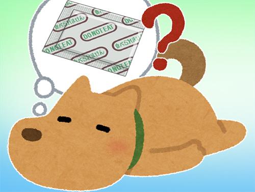 脱酸素剤を誤飲した犬にはどう対処したら?!とにかく落ち着いて確認!